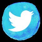 Twitter follow icon